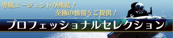 舟生(フナナマ)プロフェッショナル